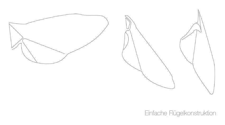 Flügelkonstruktion Bionik Design